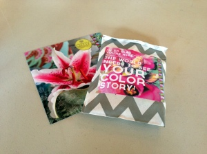amy butler your color story