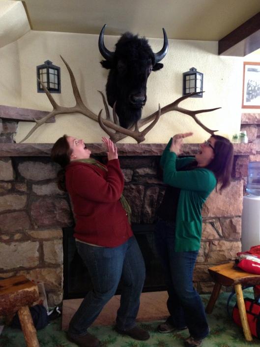buffalo attacks